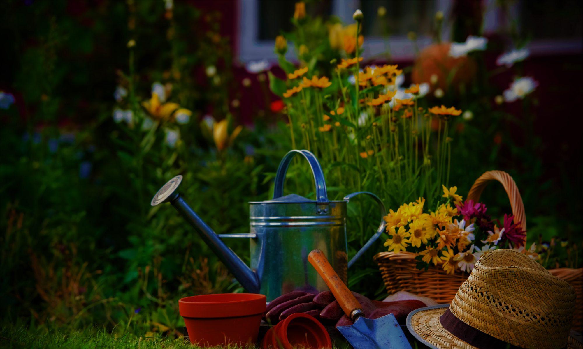 MPH|Gardening|Services